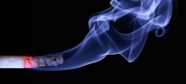 Hvad indeholder cigaretter?