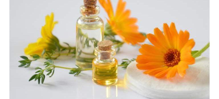 Hvad er et naturlægemiddel?